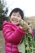 収穫 子供 家庭菜園