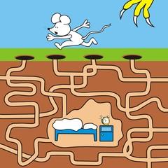 maze-mice