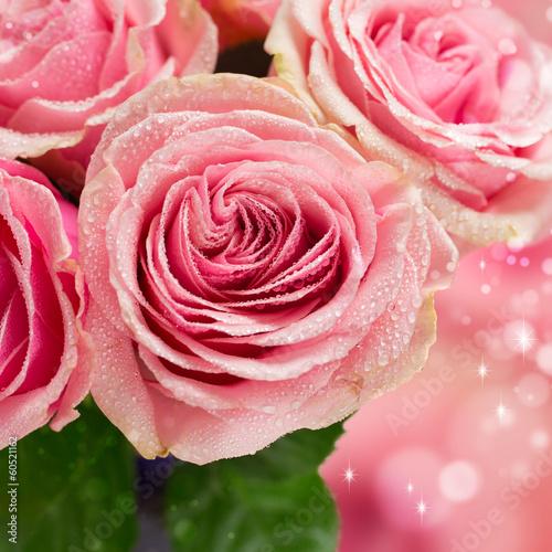 Beautiful pink rose close-up © valya82