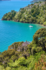 Segelboot in den Marlborough Sounds
