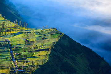 Village and Cliff at Bromo Volcano in Tengger Semeru, Java, Indo