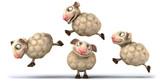 Fototapety Sheeps jumping