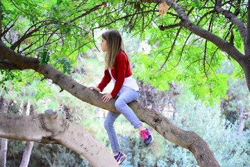 Blond firl climbing on a high tree