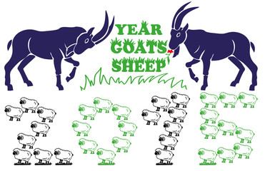 Year goats, sheep