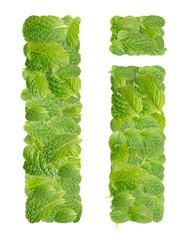 I letter leaves of mint, menthol, isolated on white