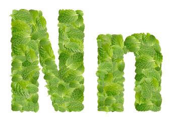 N letter leaves of mint, menthol, isolated on white
