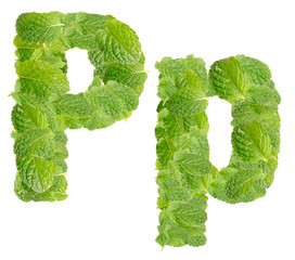 P letter leaves of mint, menthol, isolated on white