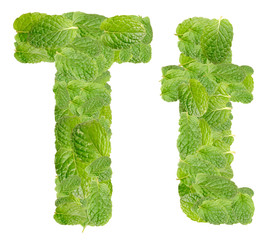 T letter leaves of mint, menthol, isolated on white