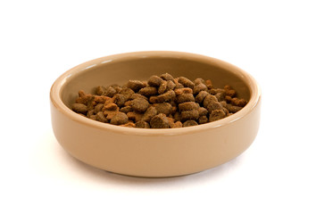 Photo of a bowl of dry cat food pellets