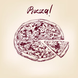 pizza hand drawn vector llustration realistic sketch