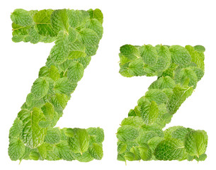 Z letter leaves of mint, menthol, isolated on white