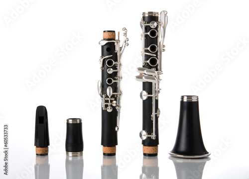 The pieces of a clarinet