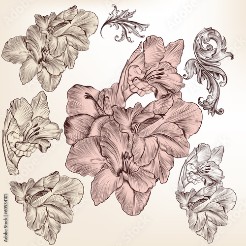 Collection of vector detailed hand drawn flowers for design