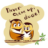 Never give up birds