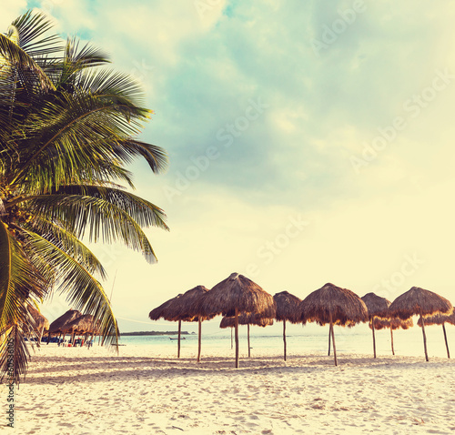 Tropical beach - 60536105