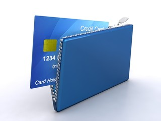 Credit card with zipper
