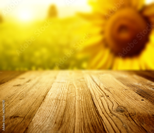 Tuscany sunflowers  background