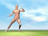 Male musculature ready to fight - 3D render poster