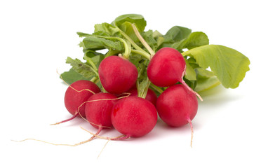 Fresh garden radish isolated on white background cutout