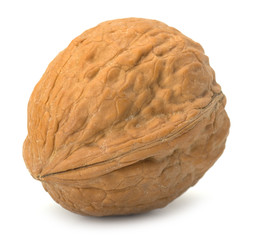 walnut isolated on the white background