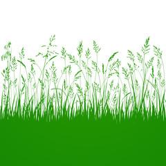 Gräser Wiese Vektor