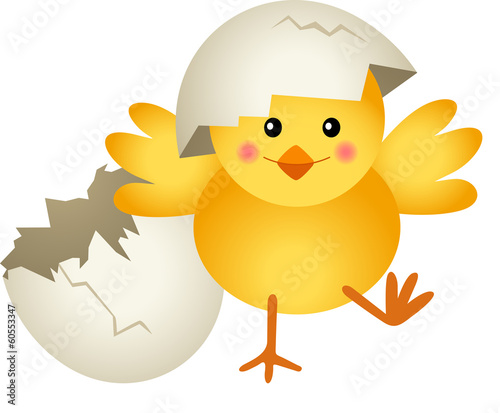 Chick Leaving Cracked Egg