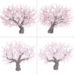 Cherry tree set
