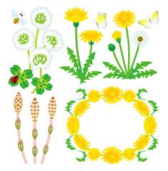 Spring Plants set