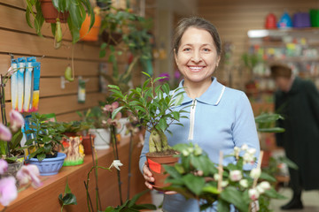 woman with ficus plant (Bonsai) in  store