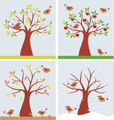 tree and cute birds in four seasons