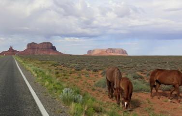 chevaux sauvages à monument Valley, Arizona