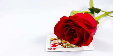 Rose and Card