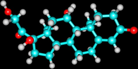 Hydrocortisone molecular structure on black