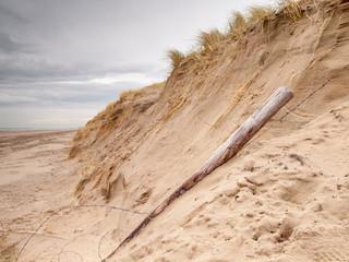 Storm Damaged Dune