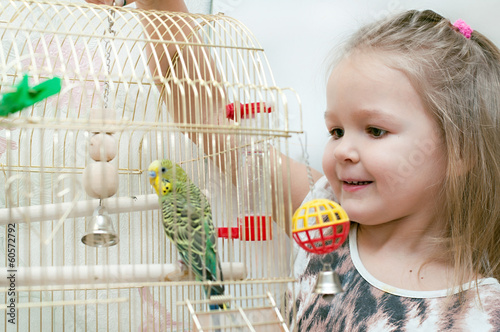 Little girl with budgie