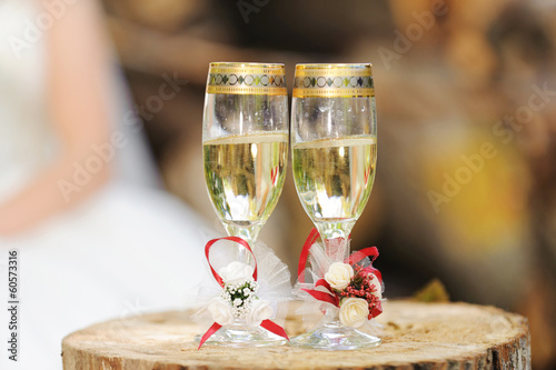 Wedding Glasses on Snag