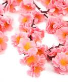 Różowe delikatne kwiatki - 60573560