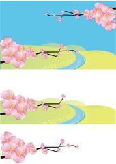 Cherry :Sakura 桜の枝と春の小川