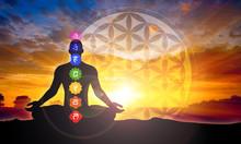 "Постер, картина, фотообои ""Meditation"""