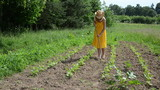 Barefoot gardener lady in dress and hat grub weed in farm