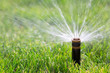 Sprinkler watering grass - 60581768