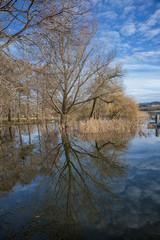 Riflesso sul lago