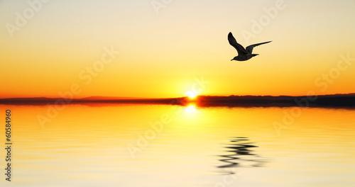 Sonnenuntergang Fototapete günstig kaufen | Fototapeten | Bildtapete ...