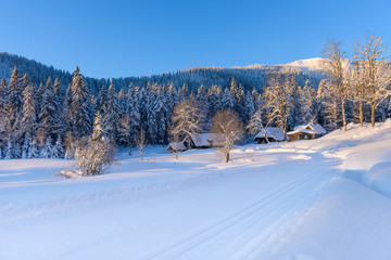 winter landscape in black forest germany
