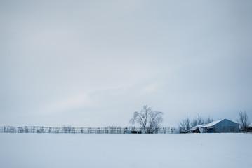 minimalism winter