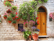 Colorful flowers outside a home in Assisi, Italy
