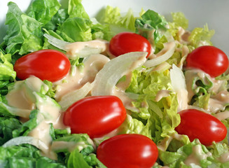 Fresh garden salad with tomatoes, onions and creamy dressing