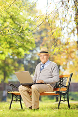 Senior gentleman working on laptop seated on bench in park