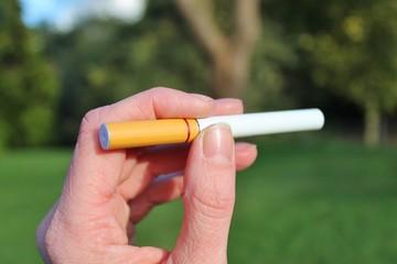 electronic cigarette battery powered vapour ecigarettes