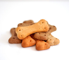 Dog food on white background